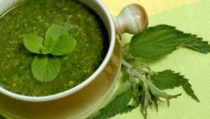 cuisiner ortie cuisiner les plantes albertivillariennes 7 les laboratoires d