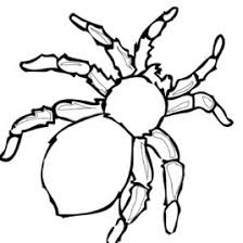 coloring spider kids drawing coloring pages marisa
