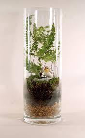 better use of a shot glass terrariums pinterest shot