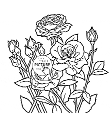 roses flower coloring page for kids flower coloring pages