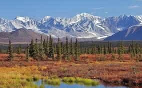 Alaska Travel Meaning images How to survive in the alaskan wilderness alaska wilderness league jpg