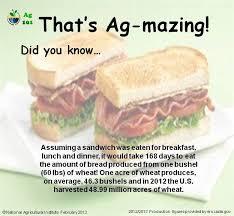 cuisine am ag en u 16 best sandwich facts images on facts
