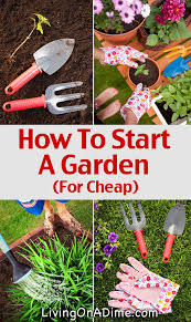 Ideas For Gardening How To Start A Garden Living On A Dime