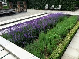 herb garden landscaping cori u0026matt garden