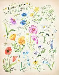 best 25 watercolor daisy tattoo ideas on pinterest daisy tattoo