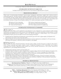 Director Of It Resume Cover Letter Example It Resumes Example Resumes For High