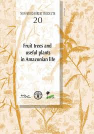 directly transplanting of native monocots from donor areas to andiroba carapa guianensis pdf download available