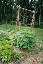 Can Cucumbers Grow Up A Trellis Best 25 Cucumber Trellis Ideas On Pinterest Permaculture