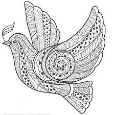 zentangle dove of peace design coloring page art u0026 culture