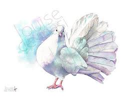 dove painting etsy