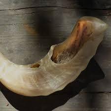 how much is a shofar classes and workshops hearing shofar