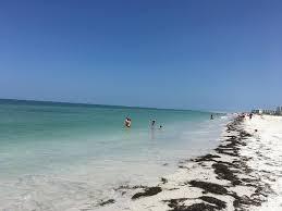 beachcomber beach resort st pete beach fl booking com