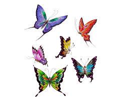 butterfly wallpaper cool butterfly tattoos butterflies