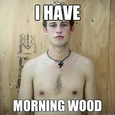 Hot Sexy Memes - i have morning wood hot sexy men quickmeme