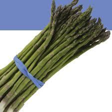 growing asparagus how to grow asparagus texas