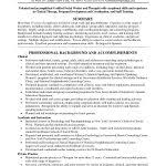 Sample Form Of Resume by Examples Of Resumes 89 Stunning That Work Berwick U201a Without