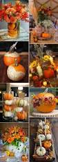 fun with pumpkins fall small arrangements pinterest pumpkins