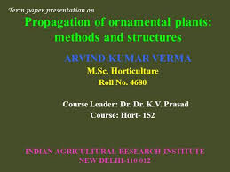 propagation of ornamental plants methods and structures authorstream