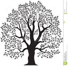 Oak Tree Drawing Oak Tree Royalty Free Stock Photos Image 7507678