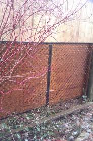best 25 chain link fence panels ideas on pinterest wire fence