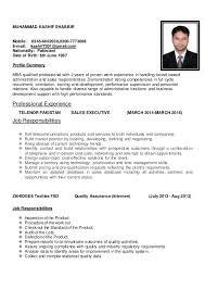 sales executive resume sales executive cv