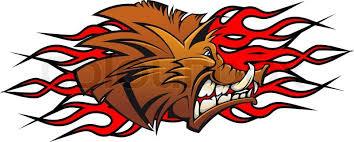 wild boar head in cartoon as a tattoo or mascot stock vector