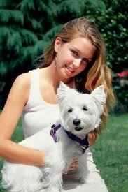 images of westie hair cuts haircut styles for a west highland white terrier dog care the