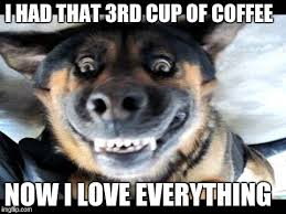 Happy Dog Meme - happy dog i had that 3rd cup of coffee now i love everything