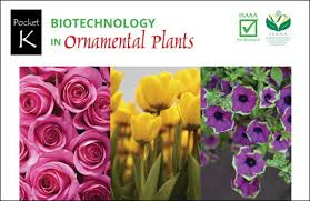 new isaaa pocket k biotechnology in ornamental plants crop