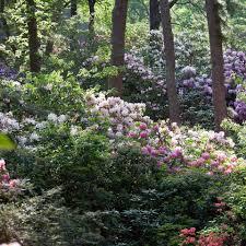 Al S Garden Art Heritage Museums U0026 Gardens Home Facebook
