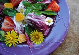 cuisiner le pissenlit pissenlit 10 bienfaits étonnants sur votre santé
