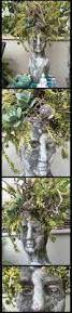 165 best cranium family images on pinterest head planters