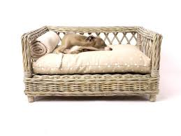 Elevated Dog Bed With Stairs Bedroom Outstanding The Original Raised Pet Bed Elevated Dog