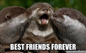 Friends Forever Meme - fish best friends forever meme picture for whatsapp
