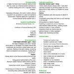 cv styles examples curriculum vitae templates cv template examples writing a cv
