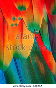 abstract colorful painting stock photo royalty free image