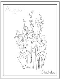 inkspired musings august u0027s gladiolus flower and meanings of flowers