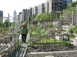 Types Of Community Gardens - the many different types of gardening gardens and gardeners