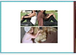 photo albums online how to design a photo album using jhoto software photo books