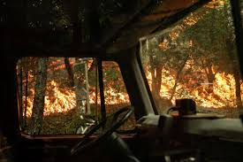 Ca Wildfire Training by The Latest California Wildfires Bring Record 31 Deaths Atlanta