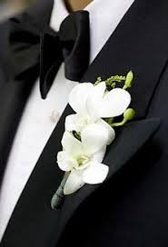 white orchid corsage proms boutonneres and corsage