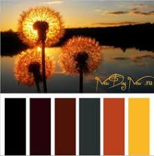 Warm Colors Beautiful Burnt Orange Color Palette Used In A Labor Day Weekend