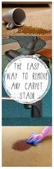 How To Remove Rug Stains The Easy Way To Remove Any Carpet Stain