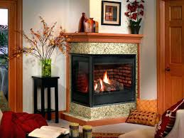 cool corner gas fireplace suzannawinter com