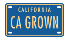 Round Table Pizza Corning Ca Where To Explore And Taste The Best Of California Farms