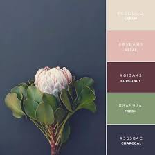 258 best inspire color images on pinterest color palettes