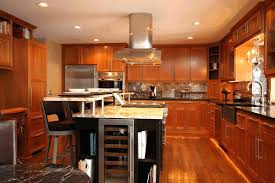 High End Kitchen Cabinets Brands Best Kitchen Cabinets Mydts520