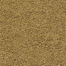 Mohawk Carpet Samples Mohawk Triexta Carpet Reviews Carpet Vidalondon
