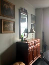 molly sleeping against my newly painted walls behr u0027mountain haze