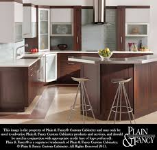 New Orleans Kitchen Design by Plain U0026 Fancy Custom Cabinets Available At Winslow Kitchen Studio